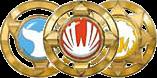 Shinobi Medals