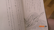 705 Рыба-Меч-Зорд в книге