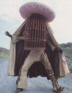 GSD-Bird Cage Vagabond