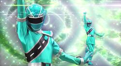 MSK-Kiramai Green