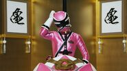 Shinken pink cockpit