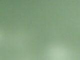 Aya Ohira