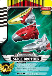 Skick Brother card