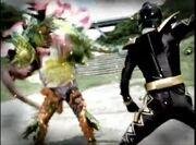Black Ranger dream