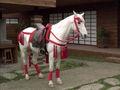 Prs-ar-warhorse