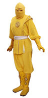 Mmpr-yellowninja