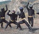 Shadow Rangers (Wild Force)