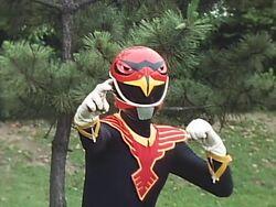 Shadow Red Hawk profile