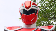 MSK-Kiramai Red