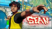 Sean Street Fighter