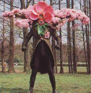 MMPR Terror Blossom