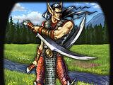 Elven Blademaster