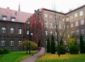 Szpital im. W. Degi