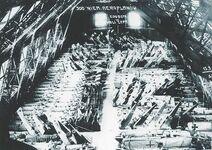 Salmoloty w zdobytej hali, 06.01.1919