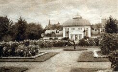 Palmiarnia - historia
