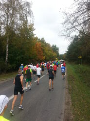 15. Poznań Maraton - peleton - od tyłu
