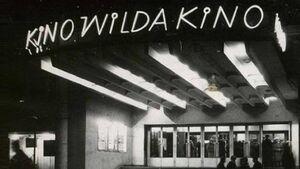 Kino Wilda - neon