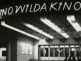 Kino Wilda