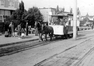 Tramwaj Konny na Roosevelta