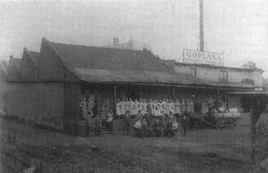 Goplana - 1913