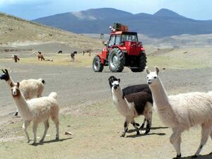 Traktoriada