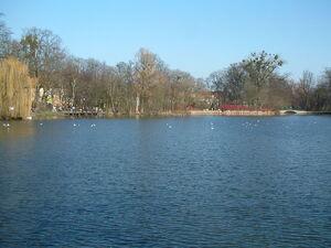 Stawy Park Sołacki