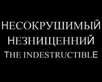 TheIndestructible2011TitleCard