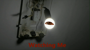 WatchingMe2017s01TitleCard