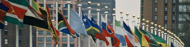 File:UNflags.png