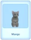 Mango ep4