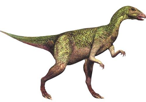 Картинки по запросу Дриозавр