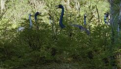 1000px-1x1 OrnithomimusFlockInBush
