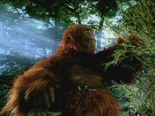 WWC1x3 Gigantopithecus