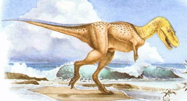 File:Albertosaurus-1.jpg