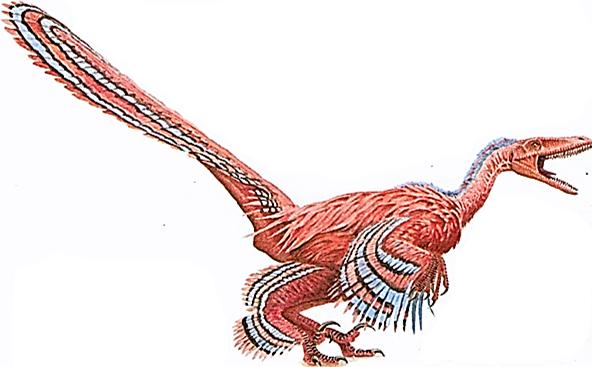 File:Saurornitholestes.png