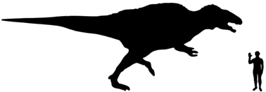File:Acrocanthosaurus-Size.png