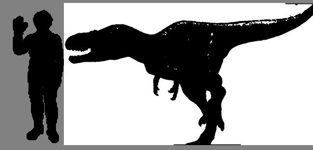 File:Nanotyrannus-Size.png