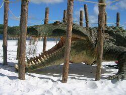 Deinosuchus on location