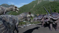 1x1 TriceratopsFightingTyrannosaursOne