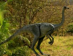 Ornithomimus infobox