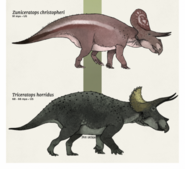 Triceratops with zuniceratops