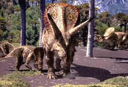 File:Torosaurus.jpg