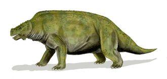 Scutosaurus BW