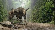 Allosaurus WWD