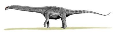 Argentinosaurus BW