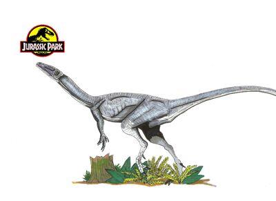Jurassic Park Coelophysis by hellraptor-1-