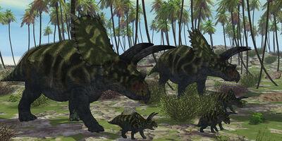 Coahuilaceratops-dinosaur-corey-ford