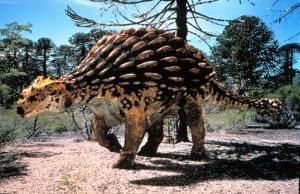 300px-Ankylosaurus