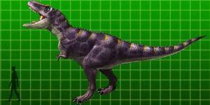 Daspletosaurus-1-