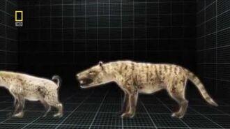National Geographic Prehistoric Predators Razor Jaws